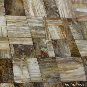 Material Petrified Wood